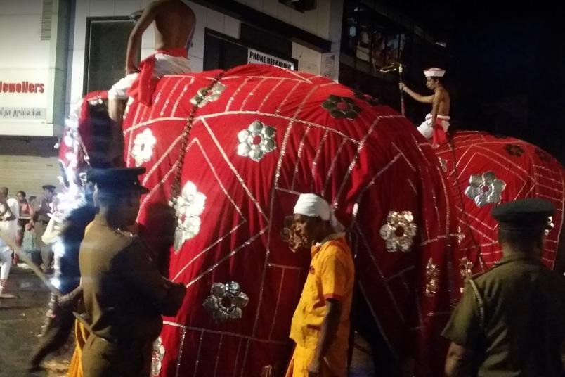 Слон на фестивале Эсала Перахера