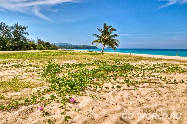 отдых на пляже Карон бич отзывы